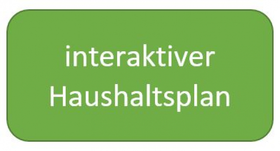 Link zum interaktiven Haushalt